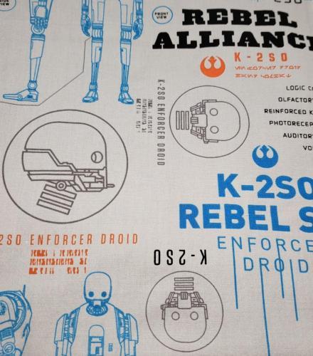 K-2SO on Gray