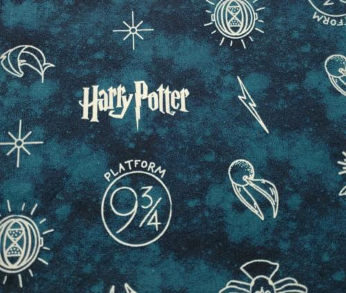 Harry Potter Icons on Teal