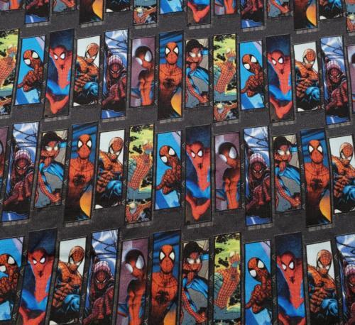 Spiderman panels